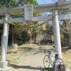 ロードバイクで行った所その226倉稲魂神社と菱の実と特別定額給付金