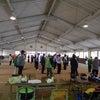 国民体育大会長野県大会(公開競技)ゲートボールの部の画像