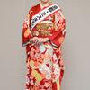「2020京都・ミスきもの」北尾 有紀の画像