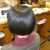 マレーア/レナータの縮毛矯正の画像