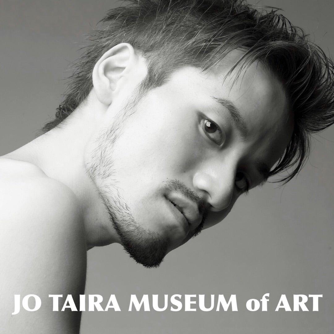 JO TAIRA MUSEUM of ART