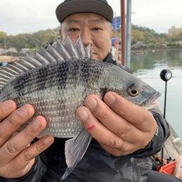 画像 【チヌ・筏】熊本県天草@つり一【CHINU男】 の記事より 11つ目