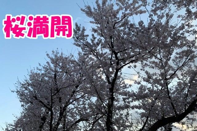 福井 県 コロナ ウイルス 感染 者 相関 図