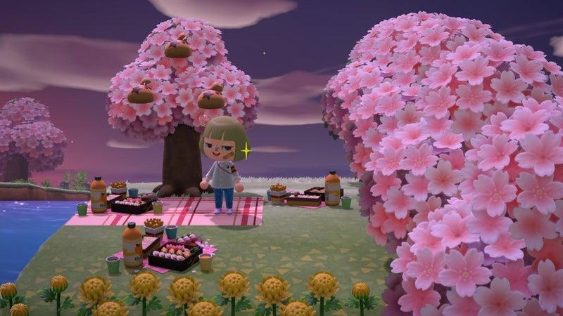 桜 時期 森 あつ