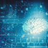 脳の形状記憶の画像