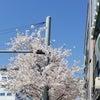 韓国カフェ★943KING'S CROSSの画像