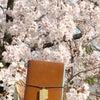 桜とトラベラーズノートの画像