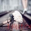 ◢「欅の真実」/私たちの境界。~欅坂の過去と現在に在る隙間~