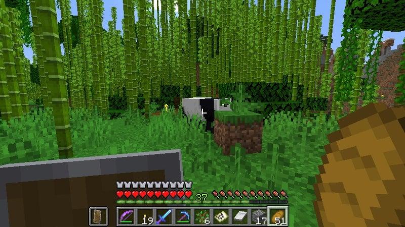 見つけ マイクラ 方 ジャングル