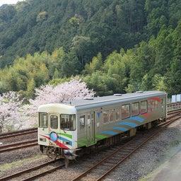 画像 桜満開❀阿佐東線と、DMV展示イベント中止のお知らせ。 の記事より 1つ目