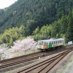 画像 桜満開❀阿佐東線と、DMV展示イベント中止のお知らせ。 の記事より 2つ目