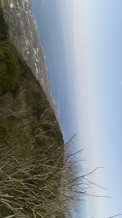 三原山は世界三大流動性火山なんだって!!! | 温泉大好きバーバ