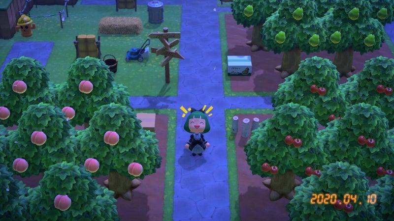 果樹園 あつ森