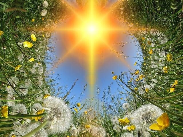 自己超克の心は、人生繁栄の力になる! サードアイ朱雀 霊感・霊視