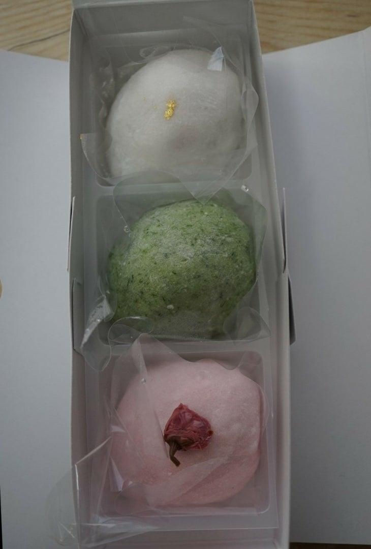 桔梗 名古屋 花