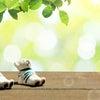 【4/12開催レポ】初のオンライン開催!~勇気づけde子育て♡お話会~の画像