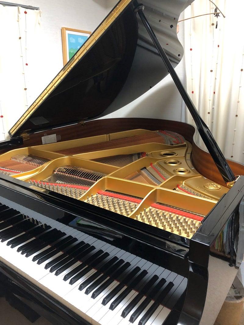 ピアノ 絶対音感 有名人