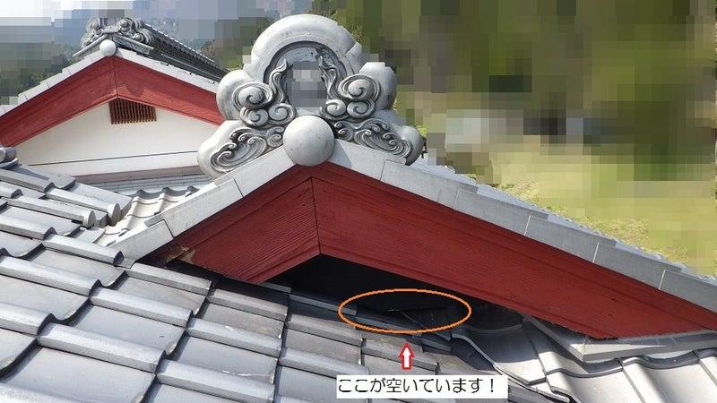 大屋根にあるテンの侵入口