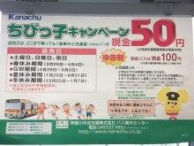 神奈川 中央 交通 バス 定期