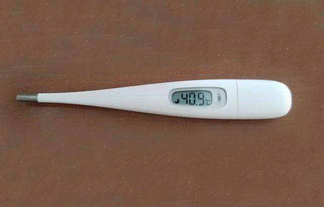 ない 体温計 売っ て