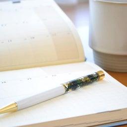 画像 【ご感想】今までなぜ手帳が白紙だったのかわからないくらい、手帳が書けています! の記事より 2つ目