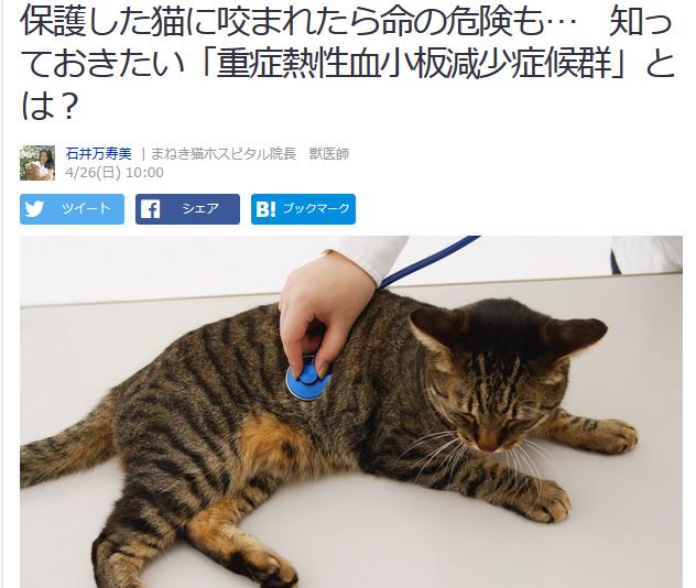 まねき猫 ホスピタル