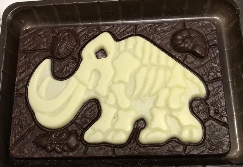 発掘恐竜チョコ いにしえの秘宝