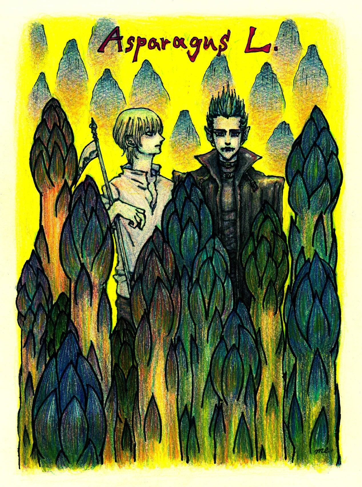 『Asparagus L. & Jack & Brad』