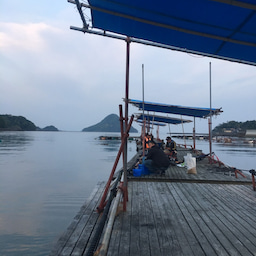 画像 【チヌ・筏】3連釣1日目@熊本県上天草市『つり一』【CHINU男】 の記事より 4つ目