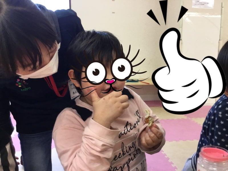 o1080081014749959274 - ♪4月24日(金)♪toiro戸塚
