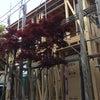 町田市木曽西4丁目にて戸建て賃貸住宅着工しましたの画像