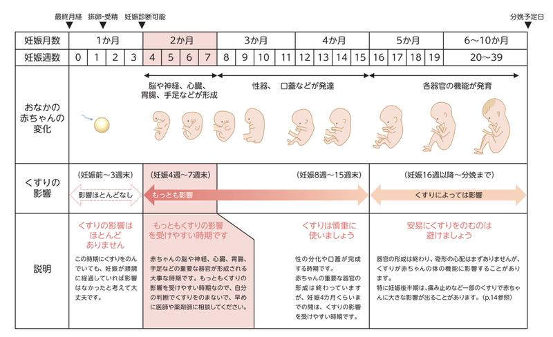 酒 ず 妊娠 気づか お 妊娠初期~妊娠中の飲酒について知っておきたいこと