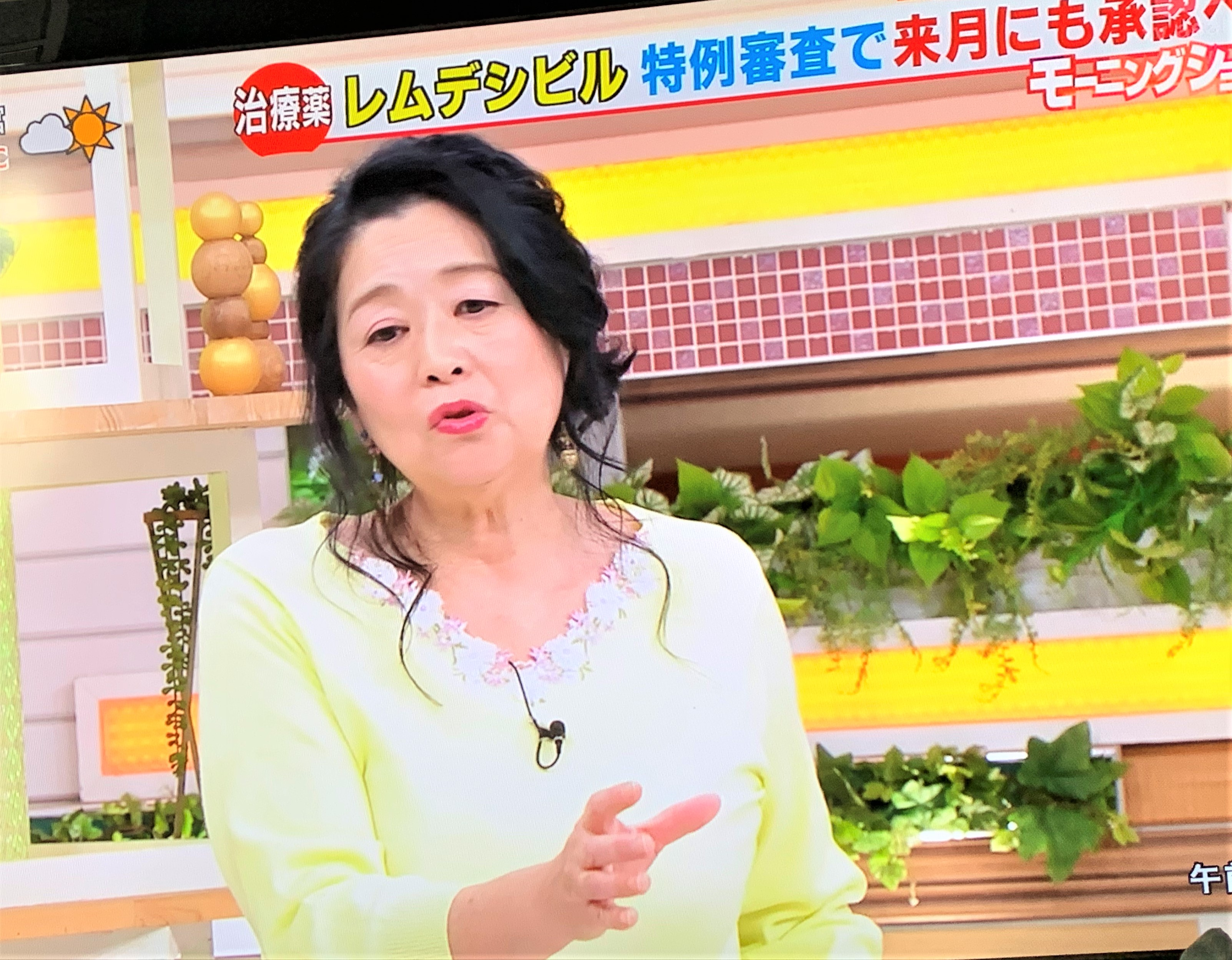 教授 白鴎 岡田 晴恵 大学