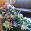 【花育フラワーセラピー資格】お花のお陰でゆとりのある生活が実現♡の画像