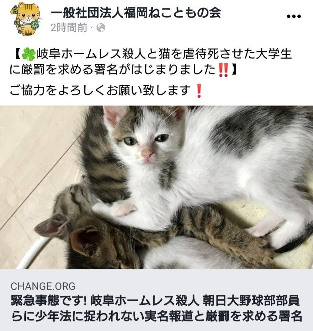 実名 殺人 朝日 大学