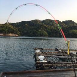 画像 【チヌ・筏】3連釣3日目@佐賀県唐津市『西遊魚センター』【CHINU男】 の記事より 9つ目
