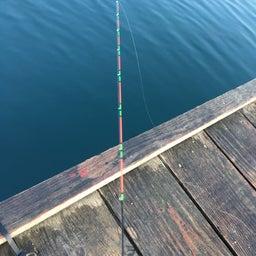 画像 【チヌ・筏】3連釣3日目@佐賀県唐津市『西遊魚センター』【CHINU男】 の記事より 8つ目