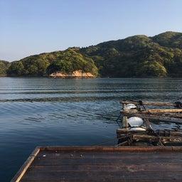 画像 【チヌ・筏】3連釣3日目@佐賀県唐津市『西遊魚センター』【CHINU男】 の記事より 4つ目