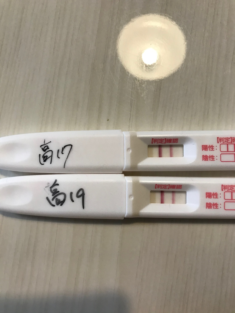 陰性 高温期19日目