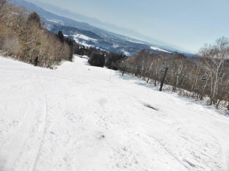 場 ノ 妙 積雪 高杉 原 スキー