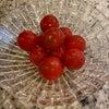 蜂蜜トマト&子供大好きナムルの画像