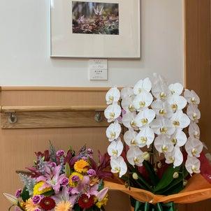 知事表彰受賞の御礼の画像