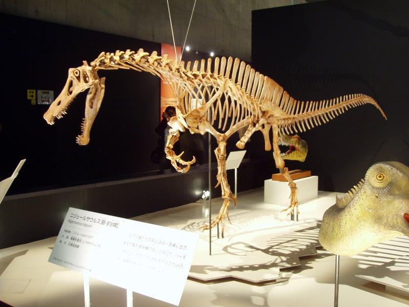 恐竜博の回顧録 2009年科博・大恐竜展(前編)   ひろさんのいつまで ...