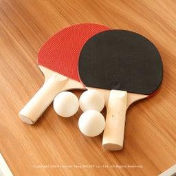 画像 アウトドア用のテーブルがミニ卓球台に早変わり!子供たちの運動不足解消に役立ちます!パパも一緒に… の記事より 9つ目