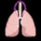 反射区激痛ランキング-免疫力アップ編の記事より