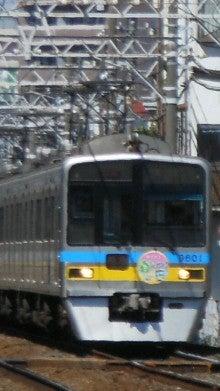 DCIM0249.jpg