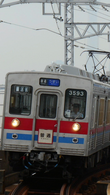 DCIM0256.jpg