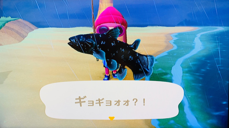 シーラカンス 釣り 方 あつ 森 【あつ森】シーラカンスの釣り方と出現時間【あつまれどうぶつの森】