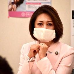 画像 HPVワクチン積極的勧奨再開を目指す議員連盟 の記事より 4つ目