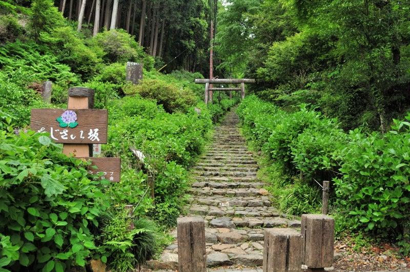太平山765